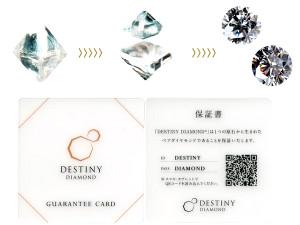 Destinydiamond2