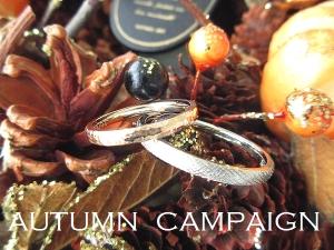 Campaignautumn